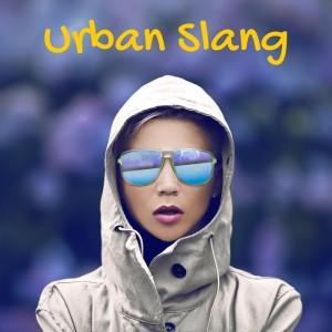 Urban slang and more mispronounced words – AIRC103