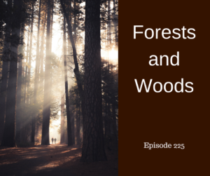 Forests and Woods – AIRC225