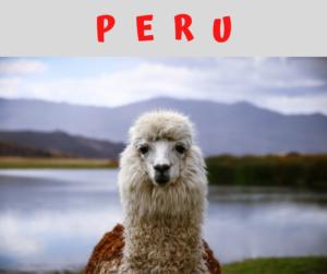Peru – AIRC269