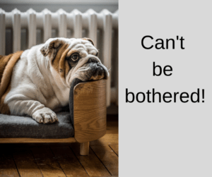 Expressions with can't – AIRC300