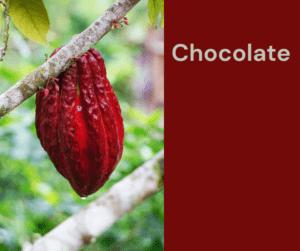 Chocolate – AIRC353