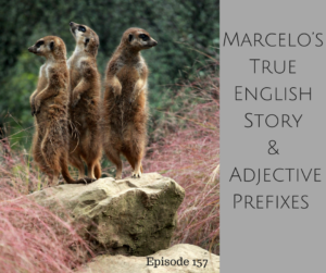 Marcelo's True English Story and Adjective Prefixes – AIRC157