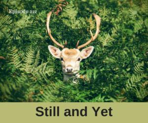 Still, Yet, No longer & No more – AIRC212