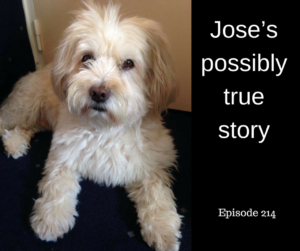 Jose's possibly true story – AIRC214