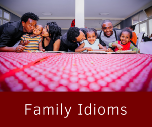 Family Idioms – AIRC245