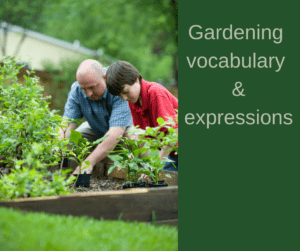 Gardening vocabulary and expressions – AIRC356